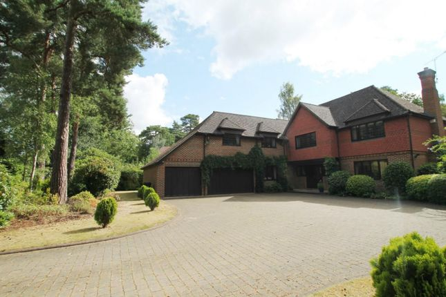 Thumbnail Detached house to rent in Heathdown Road, Pyrford, Woking