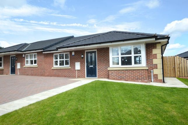 Thumbnail Bungalow for sale in Dun Moor Road, Belford, Northumberland
