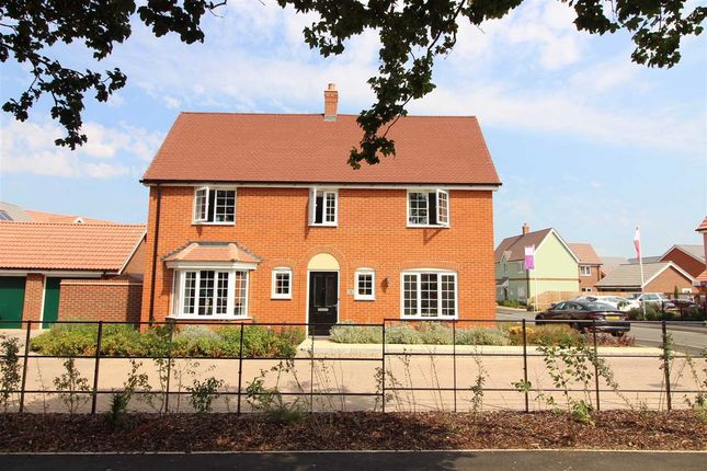 Thumbnail Detached house for sale in Abbott Way, Holbrook, Ipswich