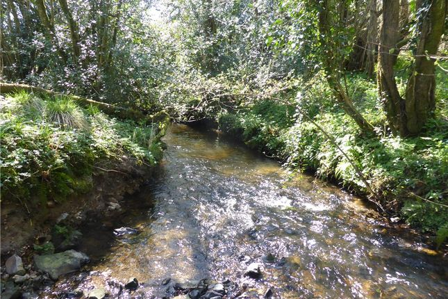 River Kit of Lower Ridge, Chardstock, Axminster, East Devon TA20