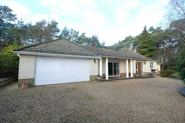 Thumbnail Bungalow for sale in Hill Top, Beaulieu