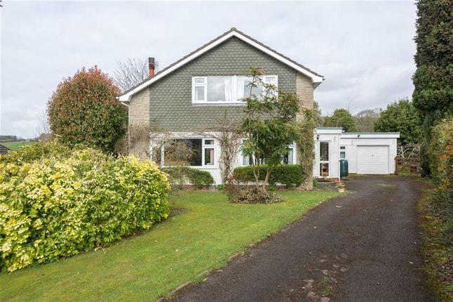 Thumbnail Detached house for sale in Castle Rise, Llanvaches, Caldicot