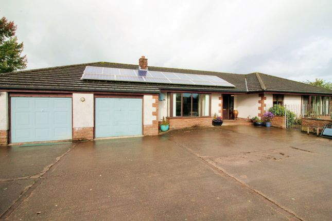 Thumbnail Detached bungalow for sale in Cuddy Lonning, Wigton
