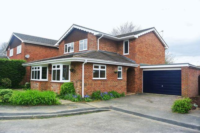 Thumbnail Detached house for sale in Pelham Close, Old Basing, Basingstoke