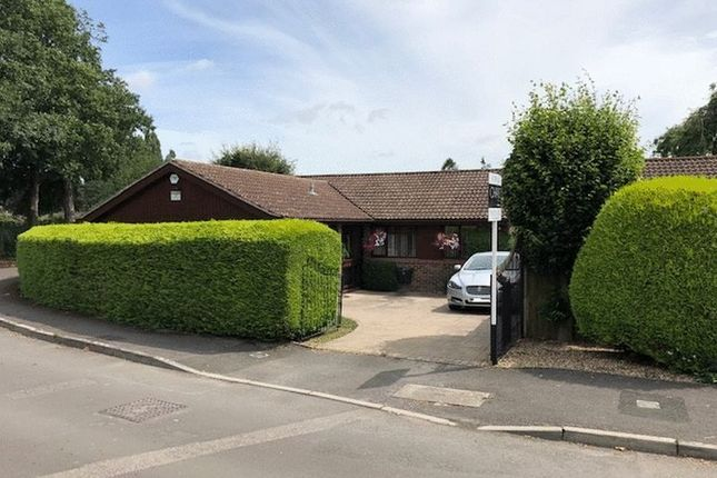 Thumbnail Bungalow for sale in Pickett Lane, Yeovil