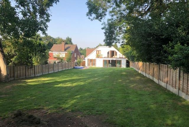 Thumbnail Detached house for sale in Grange Lane, Roydon, Harlow