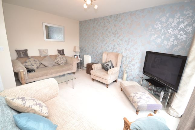 Thumbnail Semi-detached house to rent in Gadwall Croft, Newcastle