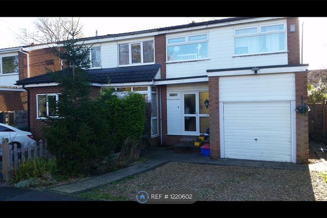 4 bed semi-detached house to rent in Springfield Drive, Wilmslow SK9