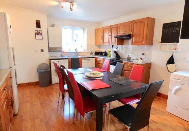 Thumbnail Semi-detached house to rent in Pategill Park, Penrith, Cumbria