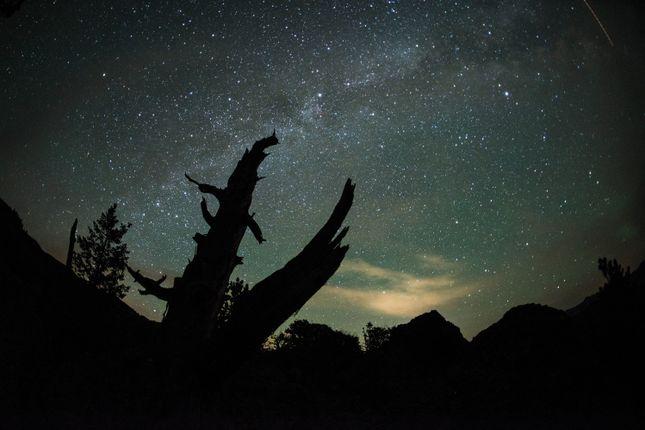 Start Night Sky of Cody, Wyoming, Usa