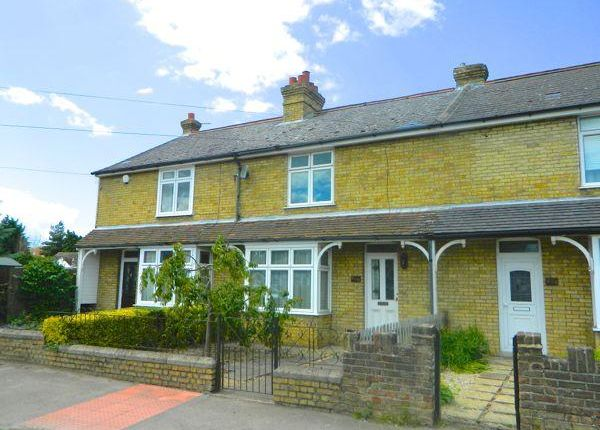 Thumbnail Terraced house to rent in Loose Road, Maidstone