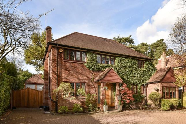 Thumbnail Detached house for sale in Claremont Avenue, Camberley