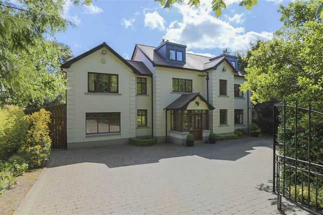 Thumbnail Detached house to rent in 27, Cadogan Park, Belfast