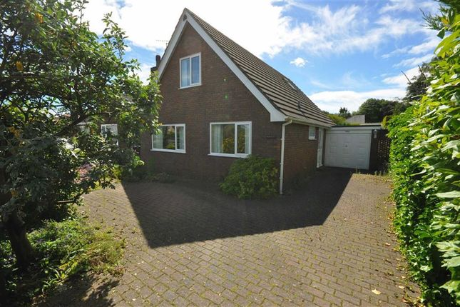 Thumbnail Detached house to rent in Mold Road, Mynydd Isa, Mold