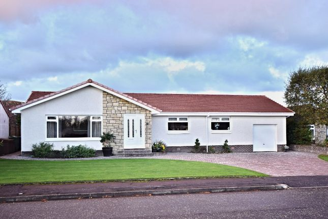 Thumbnail Bungalow for sale in Glenalla Crescent, Ayr