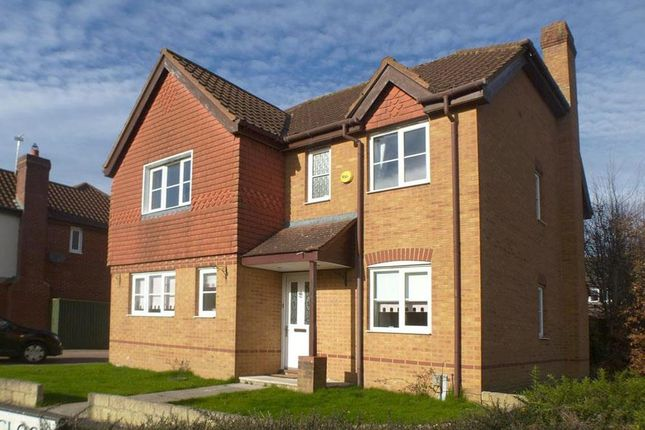 Thumbnail Detached house to rent in Tracy Close, Abbey Meads, Swindon. 4Ys.