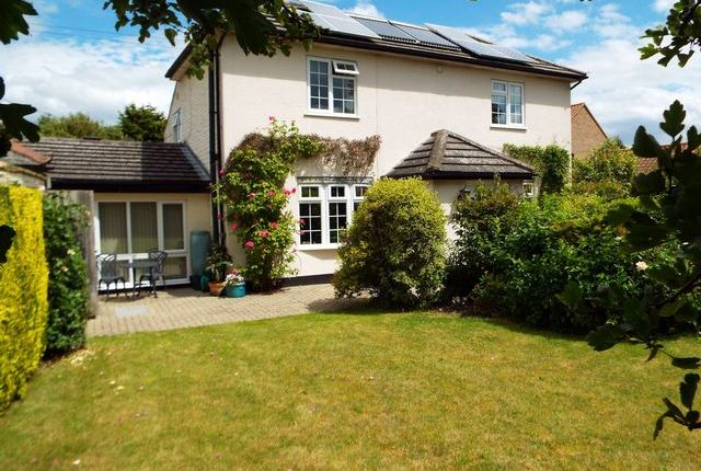 Thumbnail Detached house for sale in Cross Lane, Northwold, Thetford