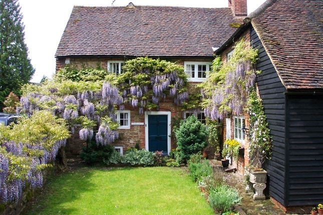 Thumbnail Semi-detached house to rent in The Street, Puttenham, Guildford