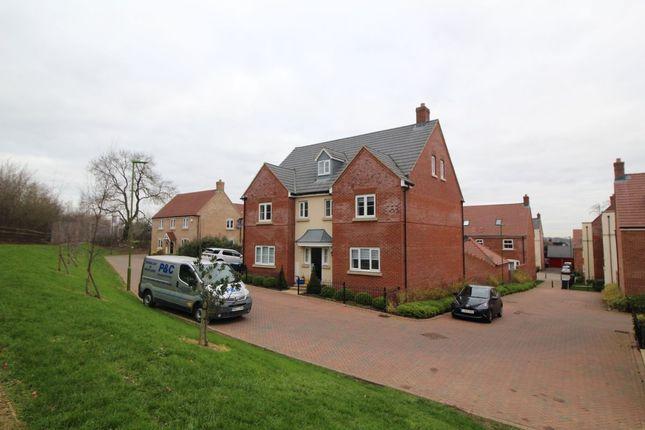 Thumbnail Detached house to rent in Avocet Road, Hemel Hempstead