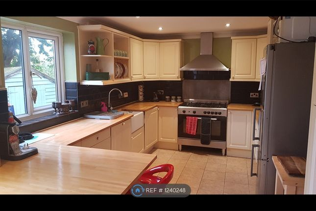 Thumbnail Semi-detached house to rent in Wesley Avenue, Colchester
