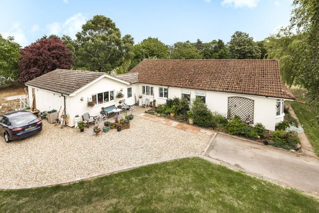 Thumbnail Bungalow for sale in Potter Hill Road, East Collingham