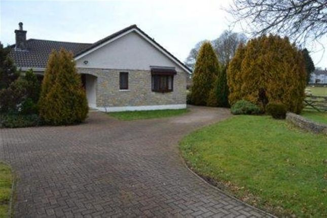 Thumbnail Bungalow to rent in Llandybie, Ammanford