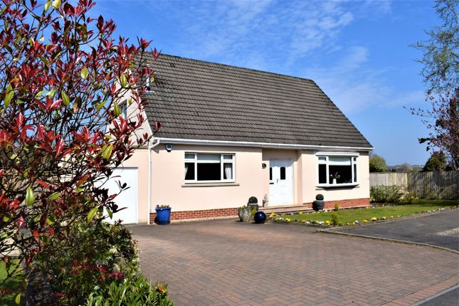 Thumbnail Detached house for sale in Fairyknowe Gardens, Bothwell, South Lanarkshire