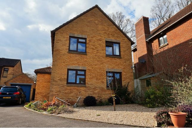 Thumbnail Detached house for sale in Eastleaze Road, Blandford Forum