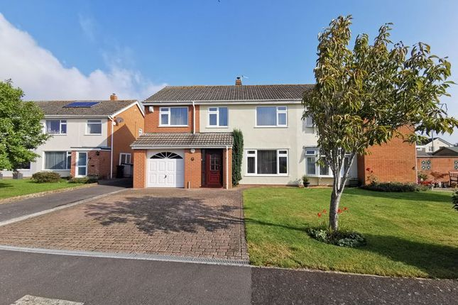 5 bed semi-detached house to rent in Ladymead Close, Bridgwater TA6