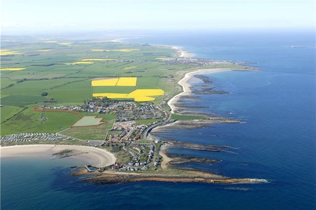 Thumbnail Land for sale in Land At Kennedy Green, Beadnell, Northumberland