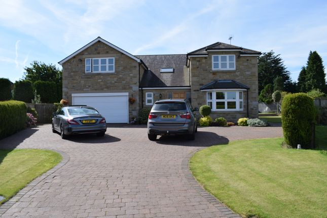 Thumbnail Detached house to rent in Meadow Court, Ponteland, Newcastle