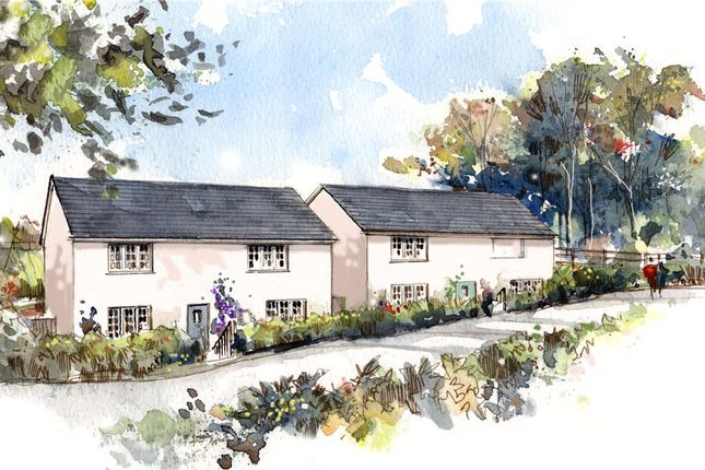 Thumbnail Detached house for sale in Smallridge, Axminster, Devon