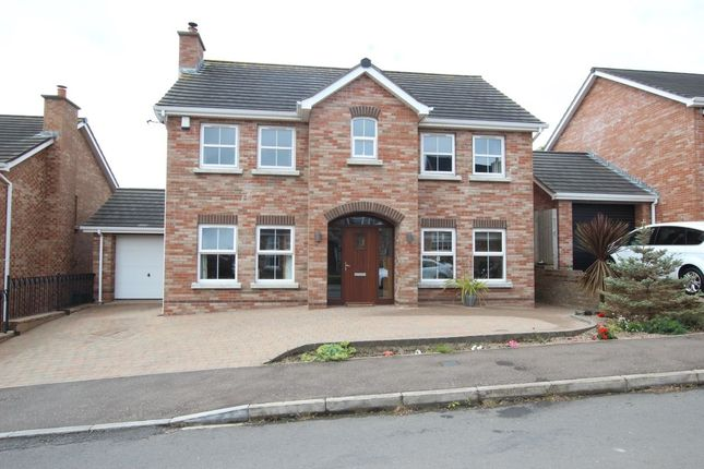Thumbnail Detached house to rent in Mount Pleasant View, Newtownabbey