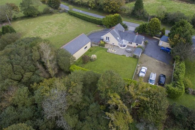 Thumbnail Detached house for sale in Hedd Annedd, Crymych, Pembrokeshire