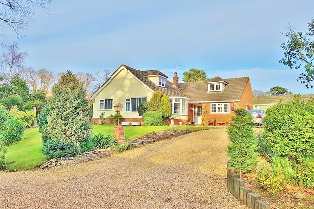 Thumbnail Detached bungalow for sale in Giddy Lake, Wimborne