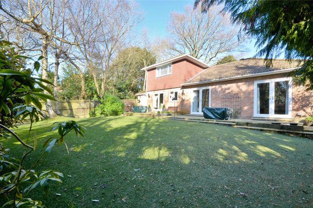 Rear Garden of Pound Hill, Crawley, West Sussex RH10