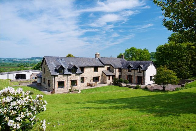 Thumbnail Equestrian property for sale in Axmouth, Seaton, Devon