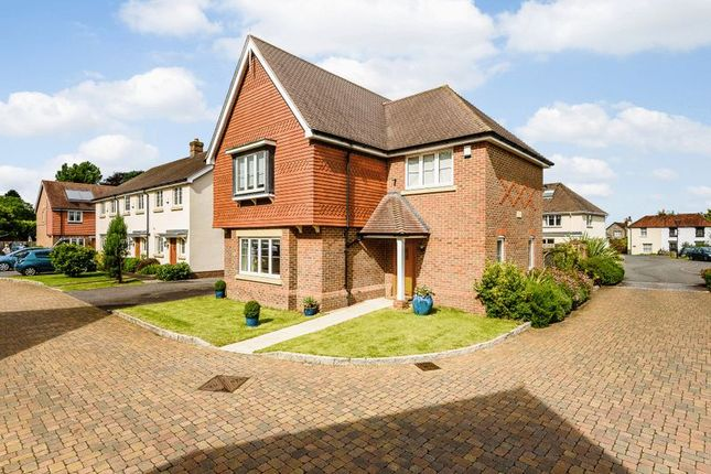 Thumbnail Detached house for sale in Meadow Close, Lavant, Chichester