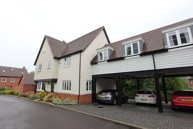 Thumbnail Link-detached house for sale in Arbour Mews, Harlow, Essex