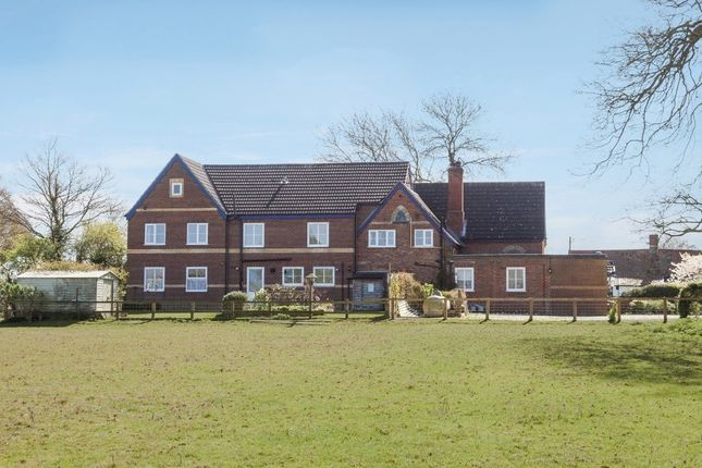 Thumbnail Detached house for sale in Great Moulton, Norwich