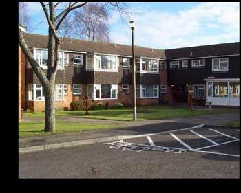 Thumbnail Flat to rent in Kestrel Court, Melksham, Wiltshire