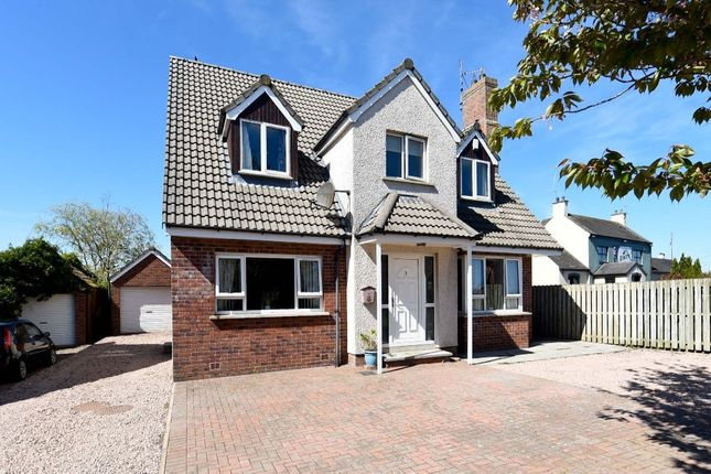 Thumbnail Detached house for sale in Bridle View, Lisburn