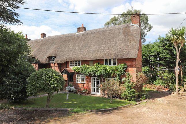 Thumbnail Cottage for sale in Burnetts Lane, Horton Heath, Eastleigh