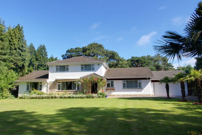 Thumbnail Detached house for sale in Spencer Road, Canford Cliffs, Poole