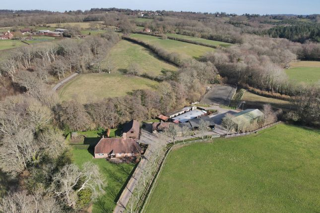 Thumbnail Equestrian property for sale in Dog Kennel Lane, Hadlow Down, Uckfield, East Sussex