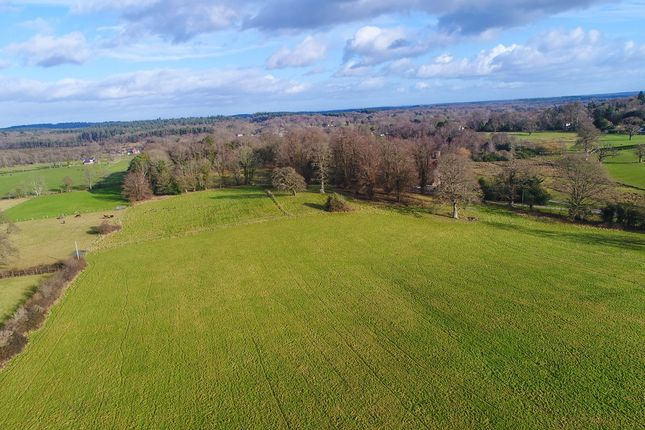 Thumbnail Land for sale in Ringwood Road, Burley