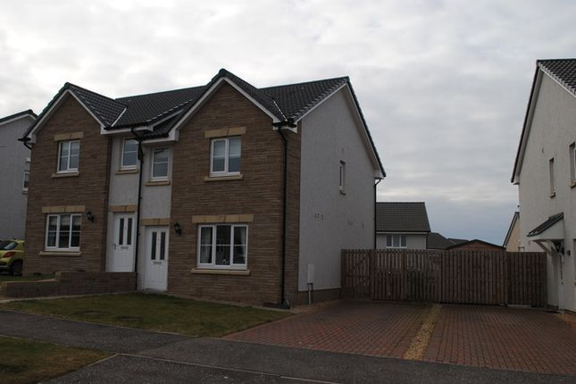 Thumbnail Semi-detached house to rent in Earl Matthew Avenue, Arbroath
