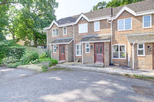 2 bed terraced house for sale in Cuckmere Close, Hailsham BN27