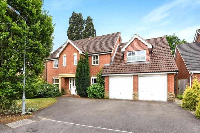 Thumbnail Detached house to rent in Roundshead Drive, Warfield, Bracknell, Berkshire