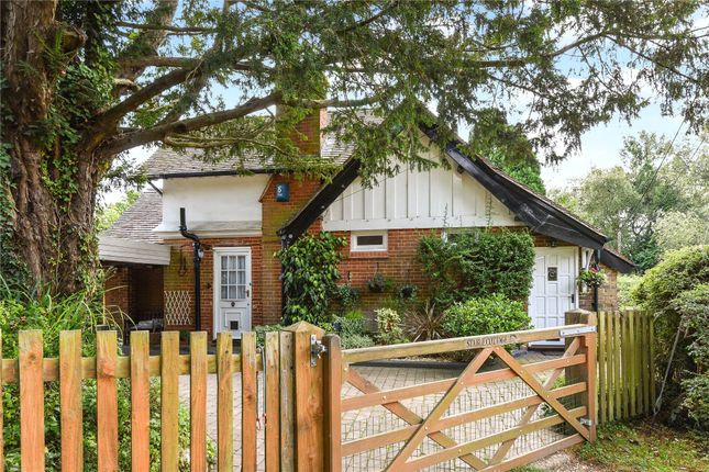 Thumbnail Detached house for sale in Beaulieu Road, Lyndhurst, Hampshire